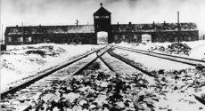 Vor-67-Jahren-wurde-das-Konzentrations-und-Vernichtungslager-Auschwitz-befreit[1]